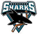 Worcester Sharks2